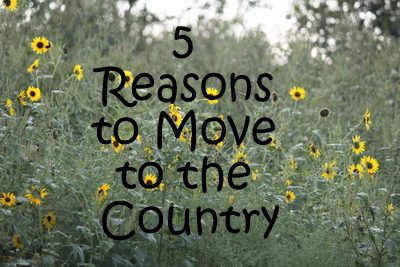 Essays on living in the country