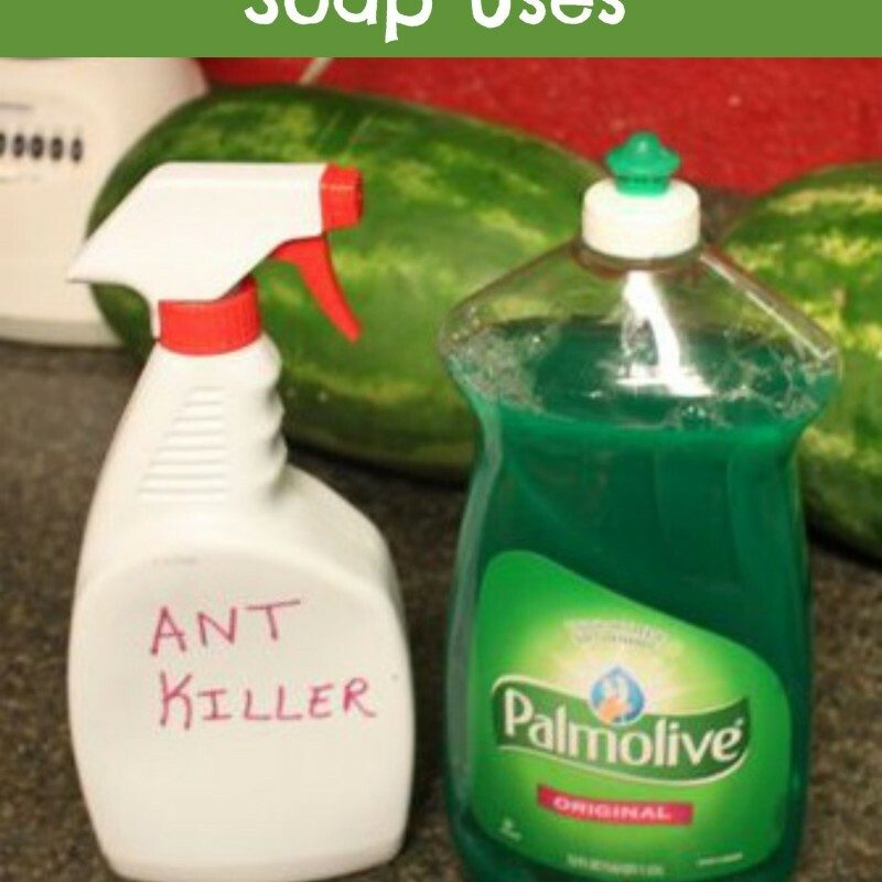 10 Unusual Dish Soap Uses – #Palmolive25Ways #cbias