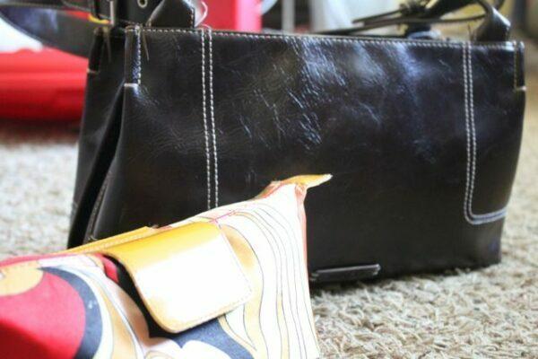 Purse & Makeup Bag 2