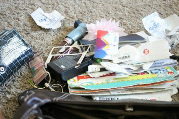 Purse & Makeup Bag