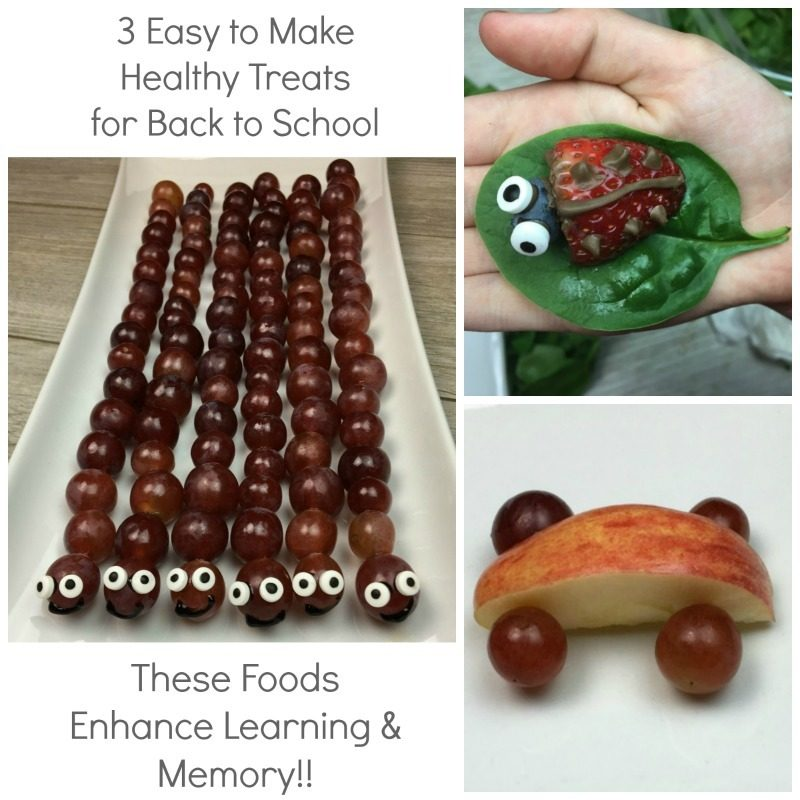 3 Easy to Make Brain Boosting Snacks for Back to School