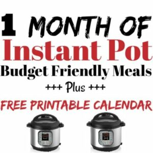 30 + Budget Friendly Meals for the Instant Pot